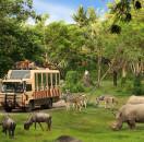 Bali Safari Marine Park – Bali Star Island