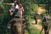 Bali Place of Interest | Explore Elephant Ride Tour