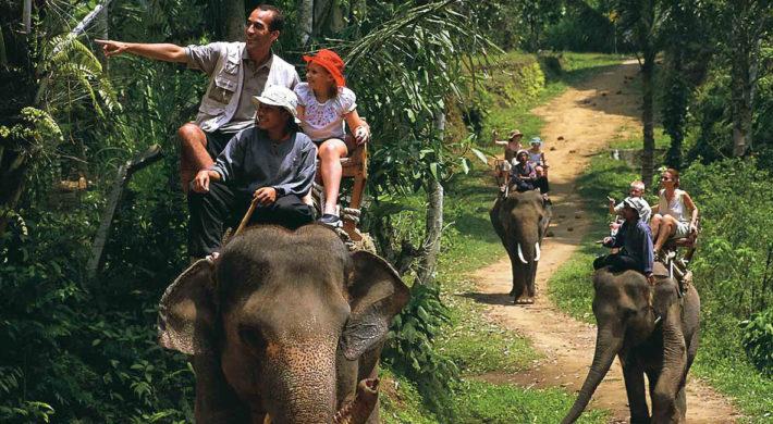 Hasil gambar untuk Elephant Ride Tour