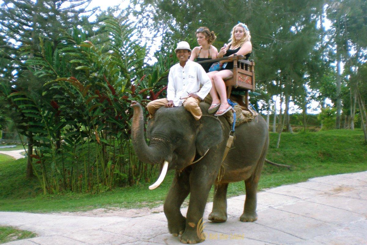 Bali Elephant Camp | Elephant Safari Ride