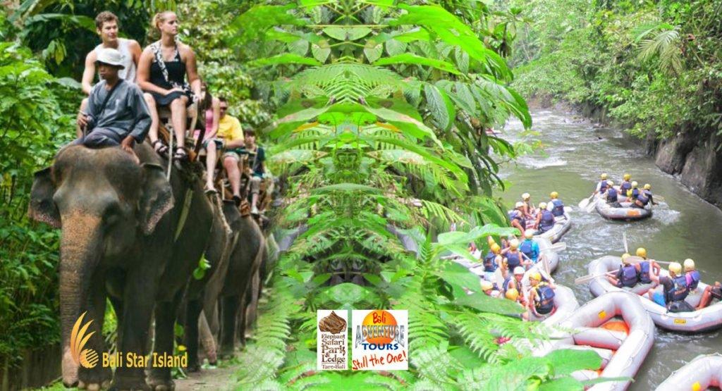rafting package, elephant safari rafting, bali, rafting, elephant, safari, packages, adventures, bali rafting, rafting elephant safari, elephant safari, elephant safari packages, bali rafting elephant, bali adventure packages