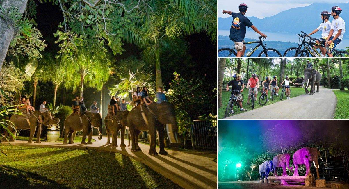 bali cycling night safari package itinerary bali. Black Bedroom Furniture Sets. Home Design Ideas